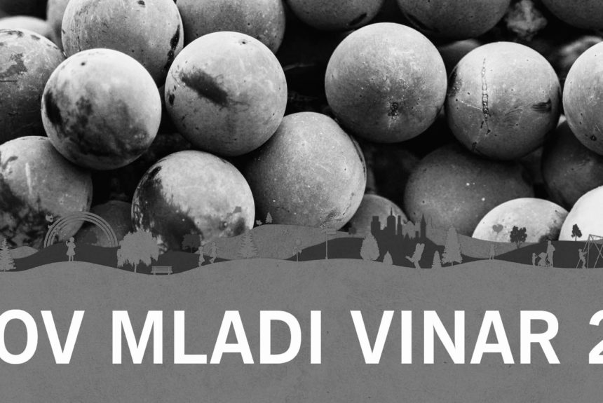 Lidlovi mladi vinarji na Slovenskem festivalu vin